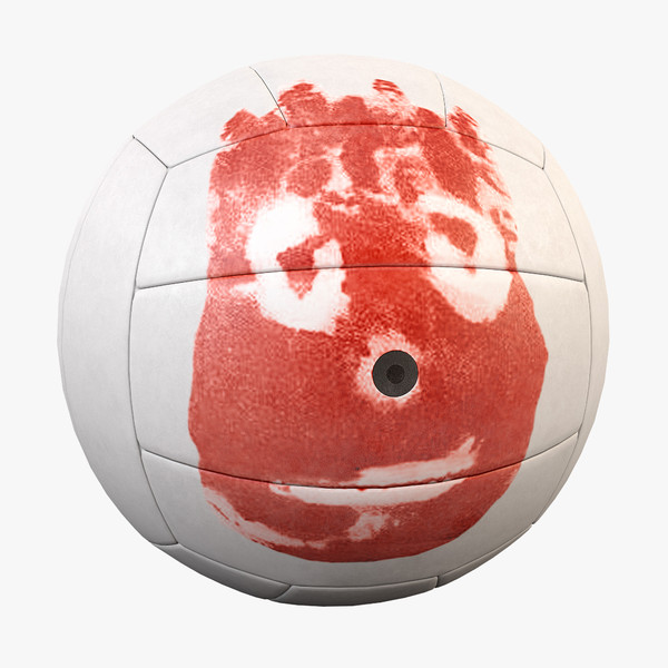 Volleyball Wilson from Cast Away-00.jpg8e63b837-ecc7-4bb5-bcad-5f5301b60601Large