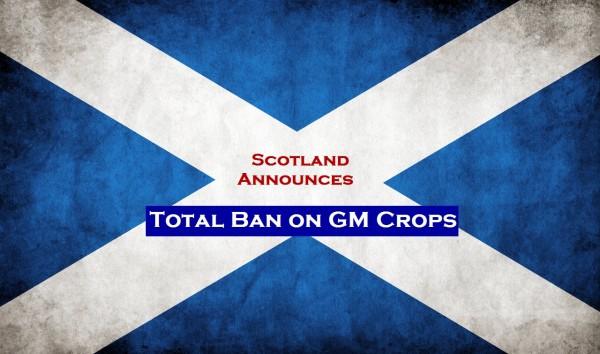 scotland_grungy_flag_by_think0b