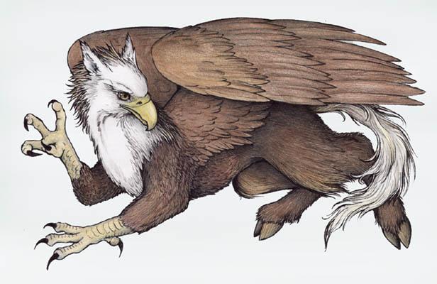 hippogriff4